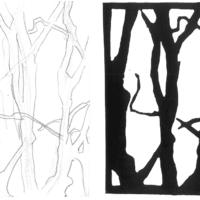 Baumstudie | Zeichnung und Linolschnitt